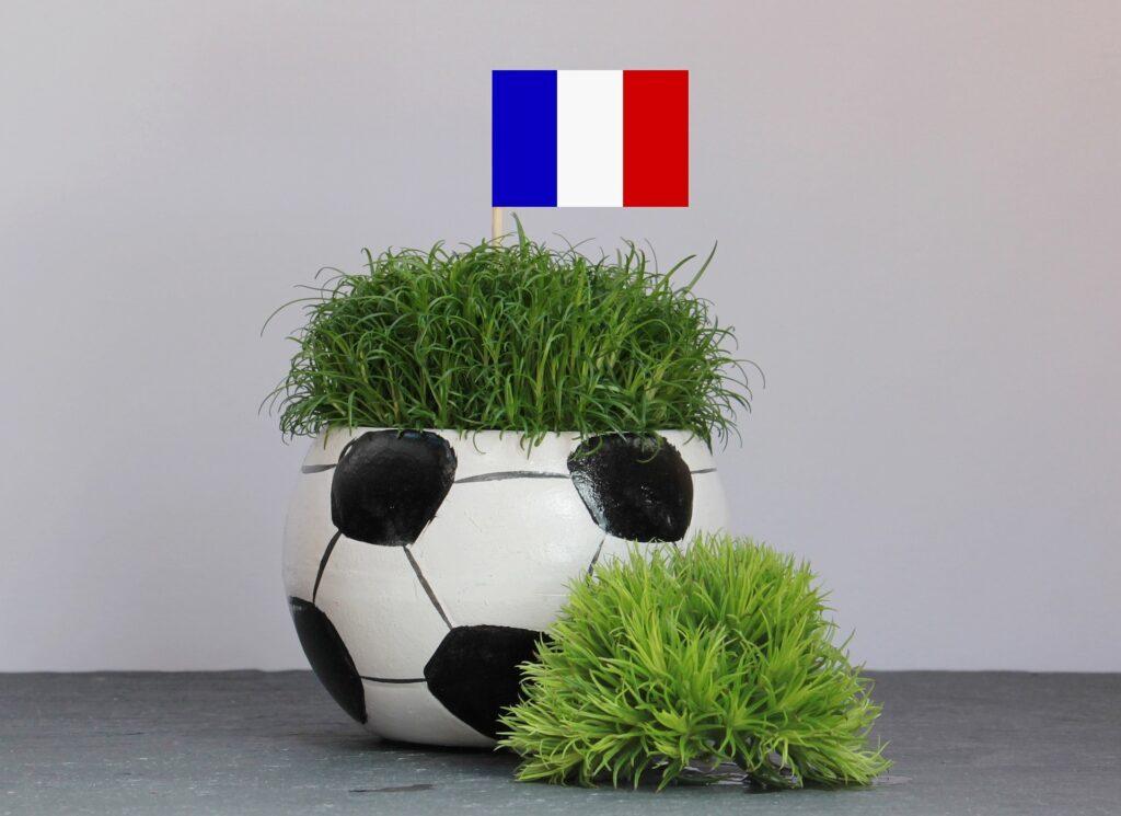 Francuska (ratatouille)